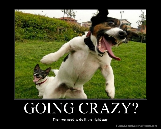 demotivational-poster-n3z5ed8z4i-GOING-CRAZY
